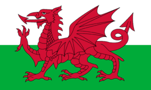 Household WELSH DRAGON FLAG