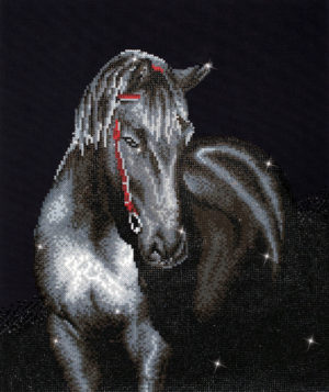 DIAMOND DOTZ MIDNIGHT STALLION